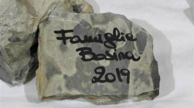 Famiglia Bosina festa degli auguri 2019
